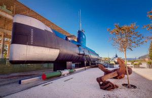HERO-Submarine---2931--_-copya